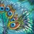 "Peacock feather fantasy (3), 6""x6"" each, acrylic on canvas, © Donna Grandin. $300. for triptych"