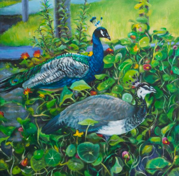 """Peacock pair, 24""""x24"""", acrylic on canvas, ©2016 Donna Grandin."""