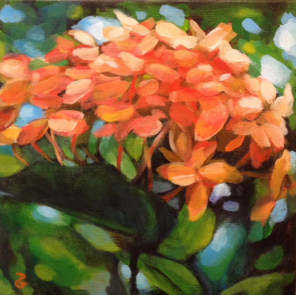 "Ixora study, 7""x7"", acrylic on canvas, © Donna Grandin. $130."