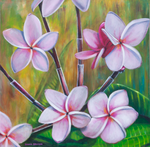 "Frangipani flowers, 30""x30"", acrylic on canvas, © Donna Grandin. $1200."