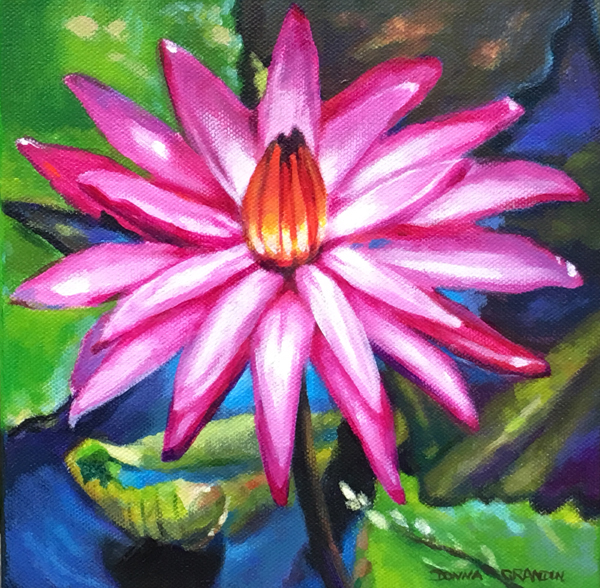 "Pink water lily, 8""x8"", acrylic on canvas, ©2016 Donna Grandin. $250."