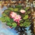 """Floating flowers, 24""""x24"""", acrylic on canvas, ©2016 Donna Grandin. $1100."""
